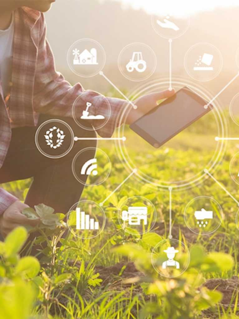 The potential of AI in the agribusiness sector towards a global perspective in terms of sustainability